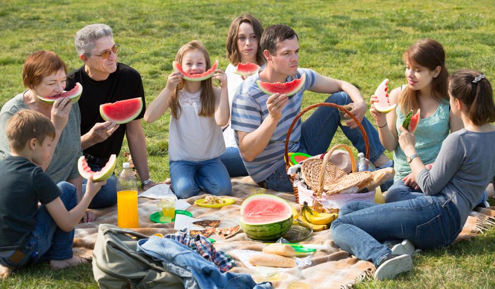 piknik majowka 2019